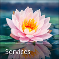 Lisa Hibler's services